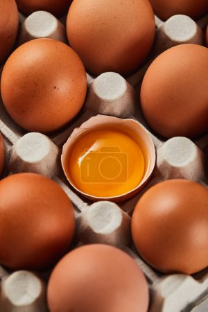 Photo for Selective focus of broken eggshell with yellow yolk near eggs in carton box - Royalty Free Image