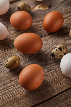 Photo for Quail and chicken eggs on wooden table - Royalty Free Image
