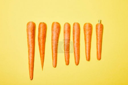 Photo for Top view of carrots in row on yellow background - Royalty Free Image