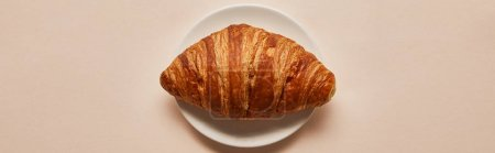 Photo for Top view of tasty croissant on white plate on beige background, panoramic shot - Royalty Free Image