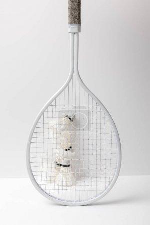 Photo pour Navettes de badminton blanc derrière raquette blanche sur fond blanc - image libre de droit