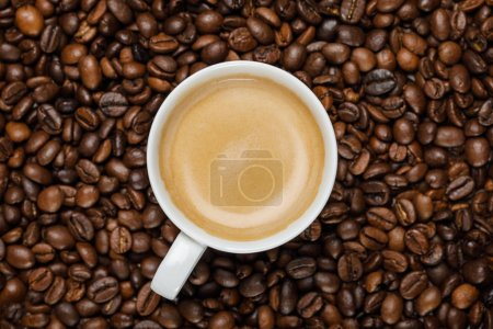 Photo for Top view of delicious coffee in white cup on fresh coffee grains - Royalty Free Image