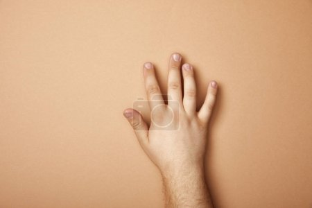 partial view of male hand on beige background with copy space