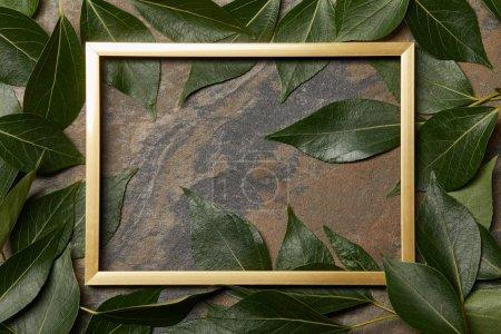 Foto de Vista superior del marco dorado vacío sobre fondo de piedra con espacio de copia y hojas frescas verdes - Imagen libre de derechos