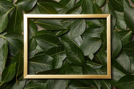 top view of golden frame on green leaves background with copy space