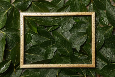 empty golden frame on green wet fresh foliage background with copy space
