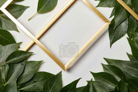 Photo for Empty golden frames on white background with green leaves - Royalty Free Image