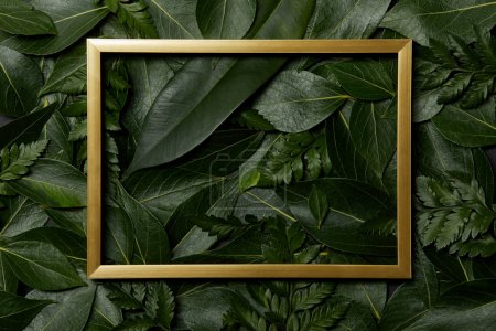 top view of golden frame on fresh leaves background