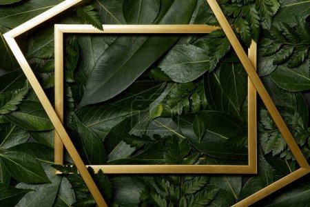 Foto de Vista superior de marcos dorados sobre hojas verdes de fondo - Imagen libre de derechos