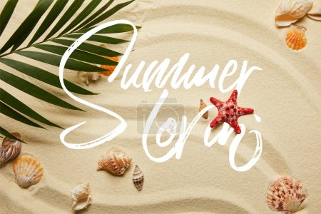 Photo for Top view of green palm leaf near red starfish and seashells on sandy beach with summer illustration - Royalty Free Image
