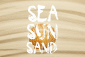 """Постер, картина, фотообои """"orange seashell on curve sandy beach in summertime with sea, sun and sand words"""""""