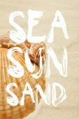 """Постер, картина, фотообои """"селективный фокус ракушек на пляже с золотым песком с морем, солнцем и песком иллюстрации"""""""