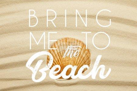 Photo pour Coquillage orange sur la plage de sable courbe en été avec m'amener à l'illustration de la plage - image libre de droit