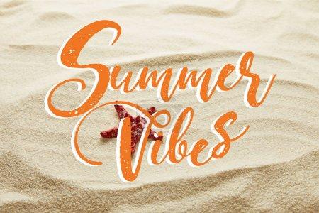estrella de mar roja en la arena con letras de vibraciones de verano
