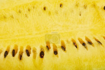 Photo for Close up view of yellow juicy ripe watermelon with seeds - Royalty Free Image