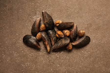 Photo for Top view of raw cockles and mussels with sand on textured surface - Royalty Free Image