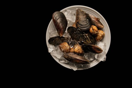 Photo for Top view of cockles and mussels with ice cubes on white plate isolated on black - Royalty Free Image