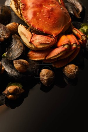 Photo for Close up view of uncooked crab, cockles and mussels on stones isolated on black - Royalty Free Image