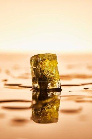 reiner Eiswürfel mit gefrorener Blume auf gelb beleuchtetem Hintergrund