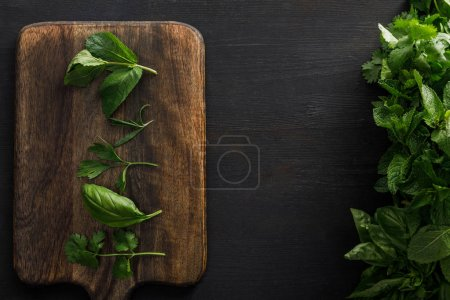 Photo for Top view of brown wooden cutting board with basil, parsley, cilantro and peppermint leaves near bundles of greenery on dark surface - Royalty Free Image