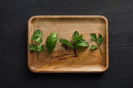 Photo for Top view of brown wooden dish with parsley, basil, cilantro and peppermint leaves on dark surface - Royalty Free Image