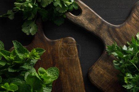 Photo pour Vue supérieure des planches à découper en bois brun avec le persil, la coriandre et les faisceaux de menthe poivrée sur la surface foncée - image libre de droit