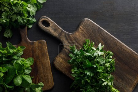 Photo for Top view of brown wooden cutting boards with parsley, peppermint and cilantro  bundles on dark surface - Royalty Free Image