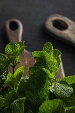 Photo pour Brindilles fraîches de menthe poivrée près des planches à découper en bois brun sur la surface foncée - image libre de droit