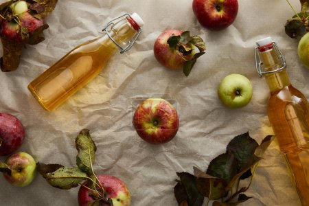 Photo pour Vue du haut des bouteilles avec du cidre près des pommes dispersées - image libre de droit