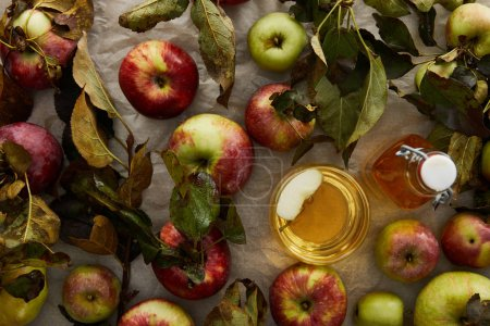 Photo for Top view of ripe apples with leaves near glass and bottle of cider - Royalty Free Image