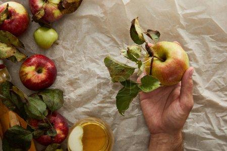Foto de Vista recortada del hombre sosteniendo la manzana por encima del papel de pergamino y el vaso de sidra - Imagen libre de derechos
