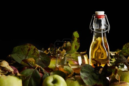 Photo for Glass and bottle of fresh cider near ripe apples isolated on black - Royalty Free Image