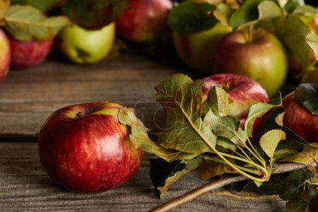 Photo for Wooden surface with apples and leaves - Royalty Free Image