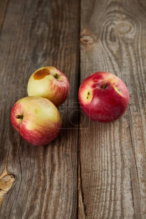 Photo for Farmers apples with small rotten spot on brown wooden surface with copy space - Royalty Free Image
