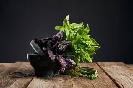 Photo for Mortar with fresh green and purple basil with rosemary on wooden table isolated on black - Royalty Free Image
