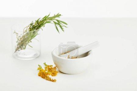 Photo pour Mortier et pilon avec mélange à base de plantes et verre avec des plantes fraîches sur fond blanc - image libre de droit