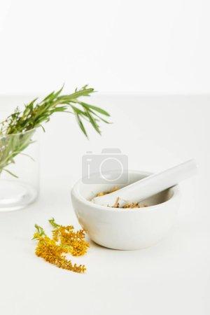 Photo pour Rameau de verge d'or près de mortier et pilon avec mélange à base de plantes et et verre avec des plantes fraîches sur fond blanc - image libre de droit