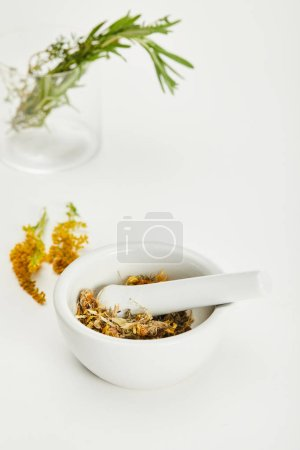 Photo for Mortar and pestle with herbal mix near goldenrod twig and glass on white background - Royalty Free Image