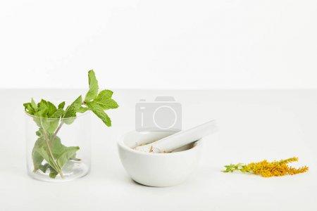 Photo pour Mortier et pilon près de la brindille et du verre de verge d'or avec la menthe fraîche sur le fond blanc - image libre de droit