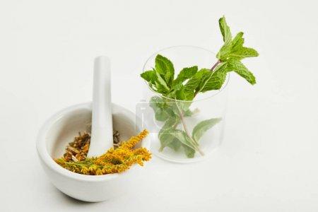 Photo pour Mortier et pilon avec le mélange de fines herbes près du verre avec la menthe fraîche sur le fond blanc - image libre de droit