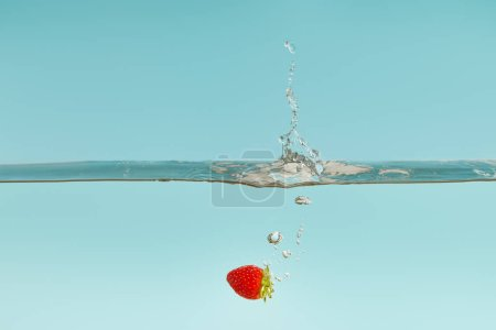 ripe strawberry falling in water with splash on blue background