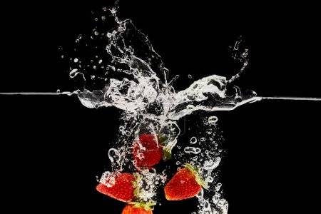 red ripe strawberries falling in water with splash isolated on black
