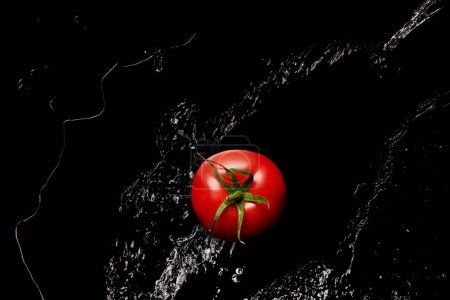 Photo for Top view of ripe red tomato in clear water puddle isolated on black - Royalty Free Image