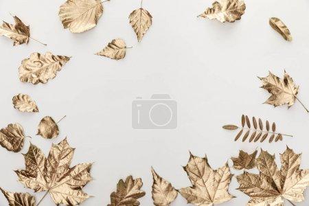 Photo pour Vue de dessus du feuillage doré sur fond blanc - image libre de droit
