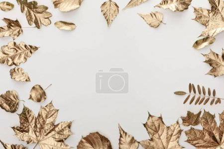 Photo pour Cadre de feuillage doré sur fond blanc avec espace de copie - image libre de droit