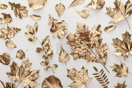 Photo for Top view of golden painted foliage on white background - Royalty Free Image