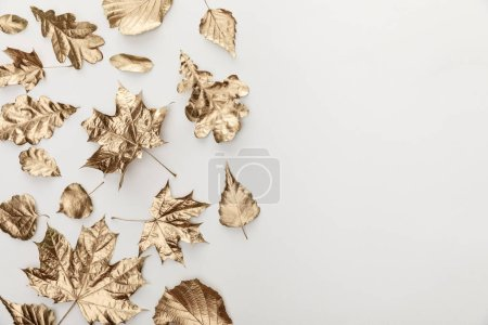 top view of golden foliage on white background with copy space