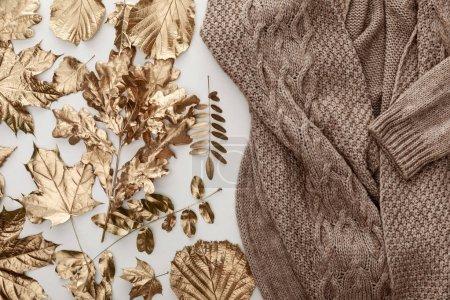 Photo pour Vue de dessus de pull confortable brun tricoté et feuillage doré sur fond blanc - image libre de droit