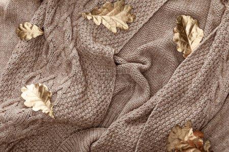 Photo pour Vue du dessus du feuillage doré éparpillé sur le pull marron tricoté - image libre de droit