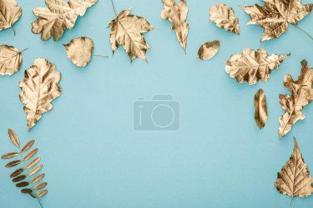 vue de dessus des feuilles dorées automnales sur fond bleu